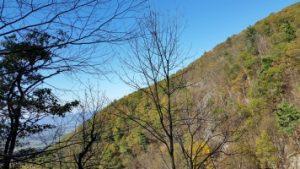 Appalchian Trail Shenandoah