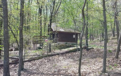 Hike: Keyes Gap to David Lesser Shelter